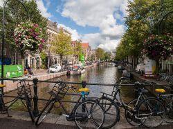 2015 Amsterdam_8