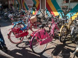2015_Haarlem_3