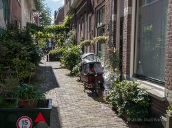 2015_Haarlem_5